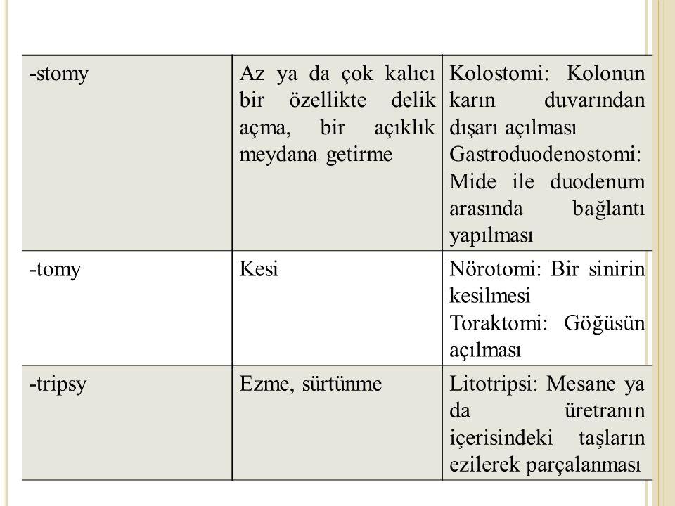 -stomyAz ya da çok kalıcı bir özellikte delik açma, bir açıklık meydana getirme Kolostomi: Kolonun karın duvarından dışarı açılması Gastroduodenostomi: Mide ile duodenum arasında bağlantı yapılması -tomyKesiNörotomi: Bir sinirin kesilmesi Toraktomi: Göğüsün açılması -tripsyEzme, sürtünmeLitotripsi: Mesane ya da üretranın içerisindeki taşların ezilerek parçalanması