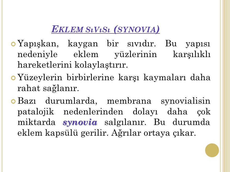 E KLEM SıVıSı ( SYNOVIA ) Yapışkan, kaygan bir sıvıdır.