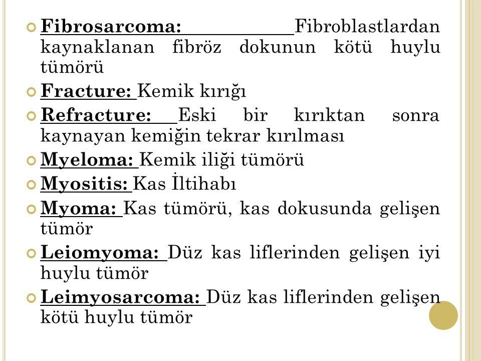 Fibrosarcoma: Fibroblastlardan kaynaklanan fibröz dokunun kötü huylu tümörü Fracture: Kemik kırığı Refracture: Eski bir kırıktan sonra kaynayan kemiğin tekrar kırılması Myeloma: Kemik iliği tümörü Myositis: Kas İltihabı Myoma: Kas tümörü, kas dokusunda gelişen tümör Leiomyoma: Düz kas liflerinden gelişen iyi huylu tümör Leimyosarcoma: Düz kas liflerinden gelişen kötü huylu tümör