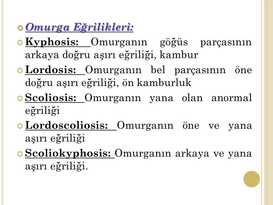 Omurga Eğrilikleri: Kyphosis: Omurganın göğüs parçasının arkaya doğru aşırı eğriliği, kambur Lordosis: Omurganın bel parçasının öne doğru aşırı eğriliği, ön kamburluk Scoliosis: Omurganın yana olan anormal eğriliği Lordoscoliosis: Omurganın öne ve yana aşırı eğriliği Scoliokyphosis: Omurganın arkaya ve yana aşırı eğriliği.