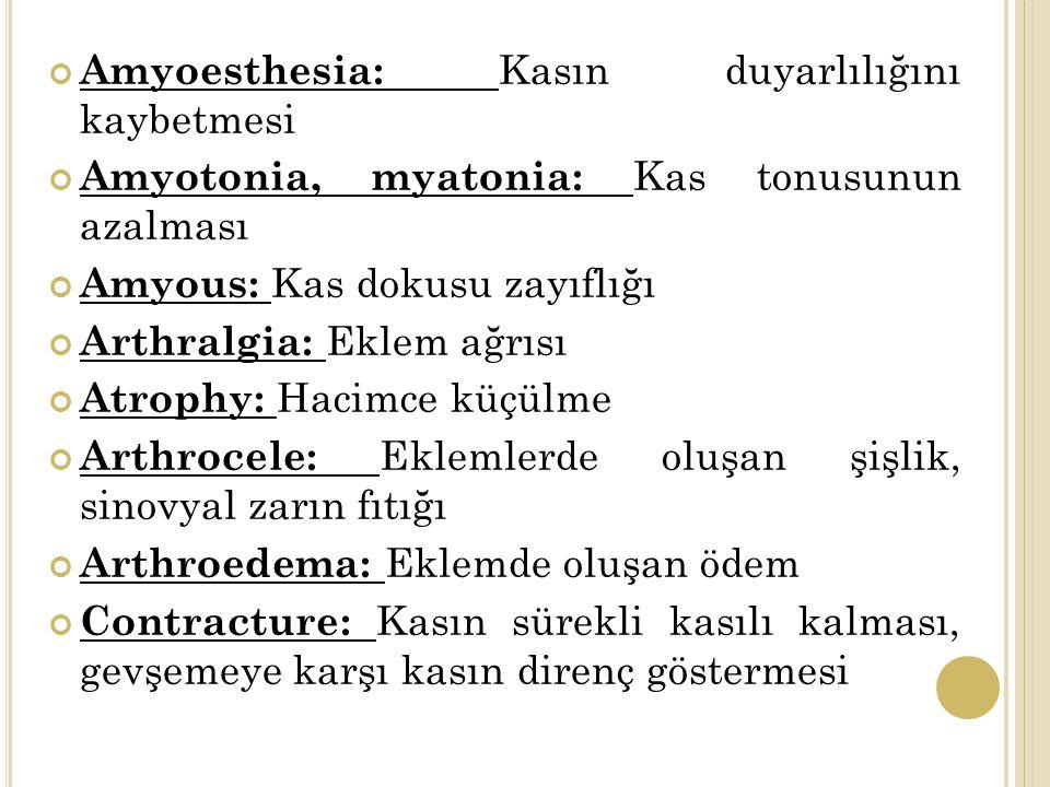 Amyoesthesia: Kasın duyarlılığını kaybetmesi Amyotonia, myatonia: Kas tonusunun azalması Amyous: Kas dokusu zayıflığı Arthralgia: Eklem ağrısı Atrophy: Hacimce küçülme Arthrocele: Eklemlerde oluşan şişlik, sinovyal zarın fıtığı Arthroedema: Eklemde oluşan ödem Contracture: Kasın sürekli kasılı kalması, gevşemeye karşı kasın direnç göstermesi