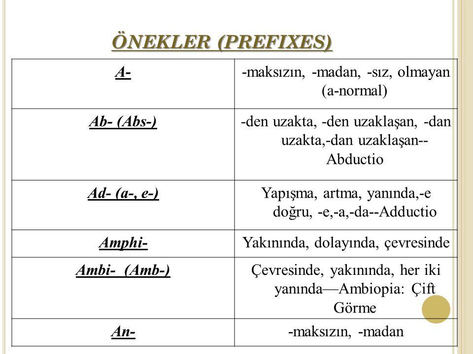 ÖNEKLER (PREFIXES) A--maksızın, -madan, -sız, olmayan (a-normal) Ab- (Abs-)-den uzakta, -den uzaklaşan, -dan uzakta,-dan uzaklaşan-- Abductio Ad- (a-, e-)Yapışma, artma, yanında,-e doğru, -e,-a,-da--Adductio Amphi-Yakınında, dolayında, çevresinde Ambi- (Amb-)Çevresinde, yakınında, her iki yanında—Ambiopia: Çift Görme An--maksızın, -madan