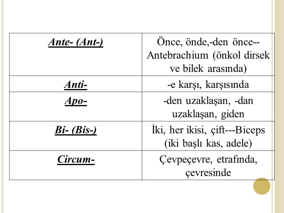 Ante- (Ant-)Önce, önde,-den önce-- Antebrachium (önkol dirsek ve bilek arasında) Anti--e karşı, karşısında Apo--den uzaklaşan, -dan uzaklaşan, giden Bi- (Bis-)İki, her ikisi, çift---Biceps (iki başlı kas, adele) Circum-Çevpeçevre, etrafında, çevresinde