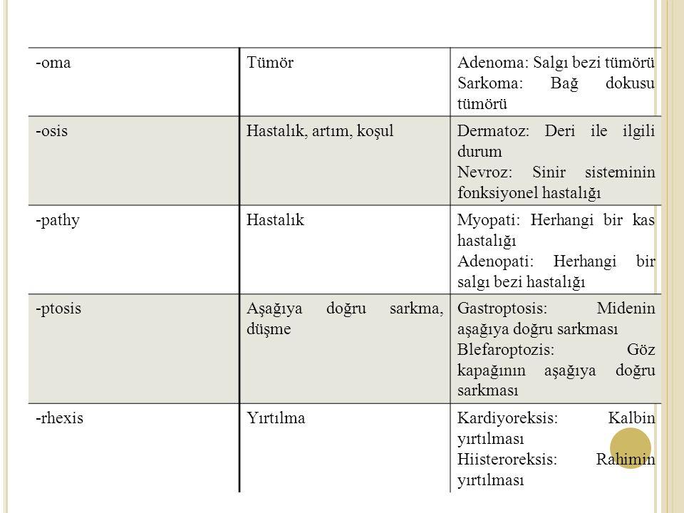 -omaTümörAdenoma: Salgı bezi tümörü Sarkoma: Bağ dokusu tümörü -osisHastalık, artım, koşulDermatoz: Deri ile ilgili durum Nevroz: Sinir sisteminin fonksiyonel hastalığı -pathyHastalıkMyopati: Herhangi bir kas hastalığı Adenopati: Herhangi bir salgı bezi hastalığı -ptosisAşağıya doğru sarkma, düşme Gastroptosis: Midenin aşağıya doğru sarkması Blefaroptozis: Göz kapağının aşağıya doğru sarkması -rhexisYırtılmaKardiyoreksis: Kalbin yırtılması Hiisteroreksis: Rahimin yırtılması
