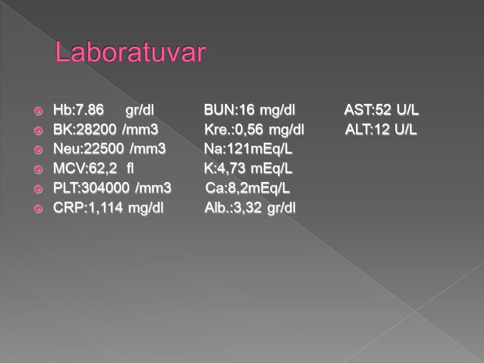  Hb:7.86 gr/dl BUN:16 mg/dl AST:52 U/L  BK:28200 /mm3 Kre.:0,56 mg/dl ALT:12 U/L  Neu:22500 /mm3 Na:121mEq/L  MCV:62,2 fl K:4,73 mEq/L  PLT:304000 /mm3 Ca:8,2mEq/L  CRP:1,114 mg/dl Alb.:3,32 gr/dl