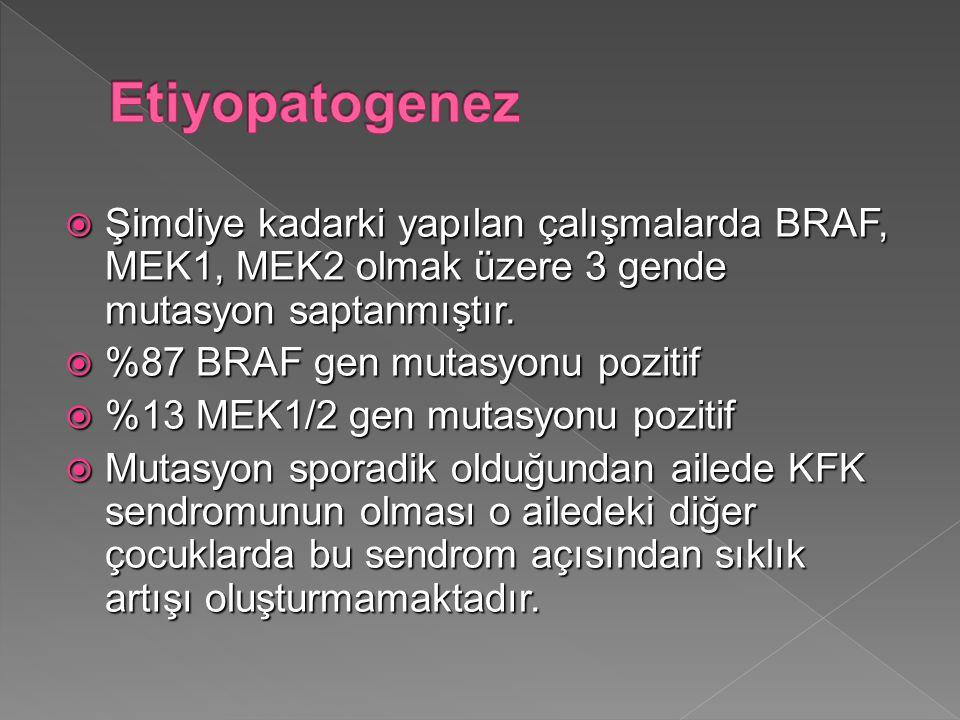  Şimdiye kadarki yapılan çalışmalarda BRAF, MEK1, MEK2 olmak üzere 3 gende mutasyon saptanmıştır.  %87 BRAF gen mutasyonu pozitif  %13 MEK1/2 gen m