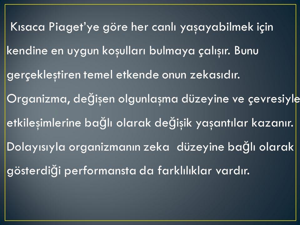 Kısaca Piaget'ye göre her canlı yaşayabilmek için kendine en uygun koşulları bulmaya çalışır.
