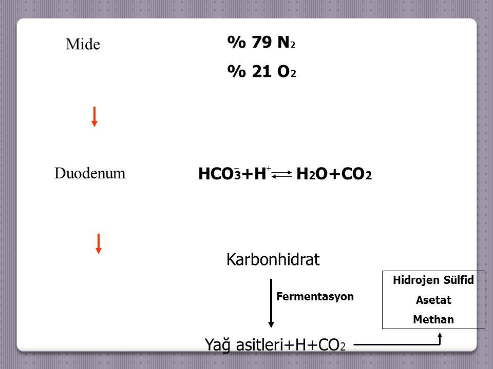 % 79 N 2 % 21 O 2 HCO 3 +H H 2 O+CO 2 Karbonhidrat Yağ asitleri+H+CO 2 Fermentasyon Hidrojen Sülfid Asetat Methan Mide Duodenum