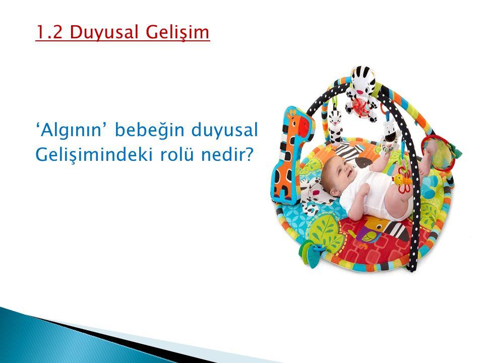 1.2 Duyusal Gelişim 'Algının' bebeğin duyusal Gelişimindeki rolü nedir?
