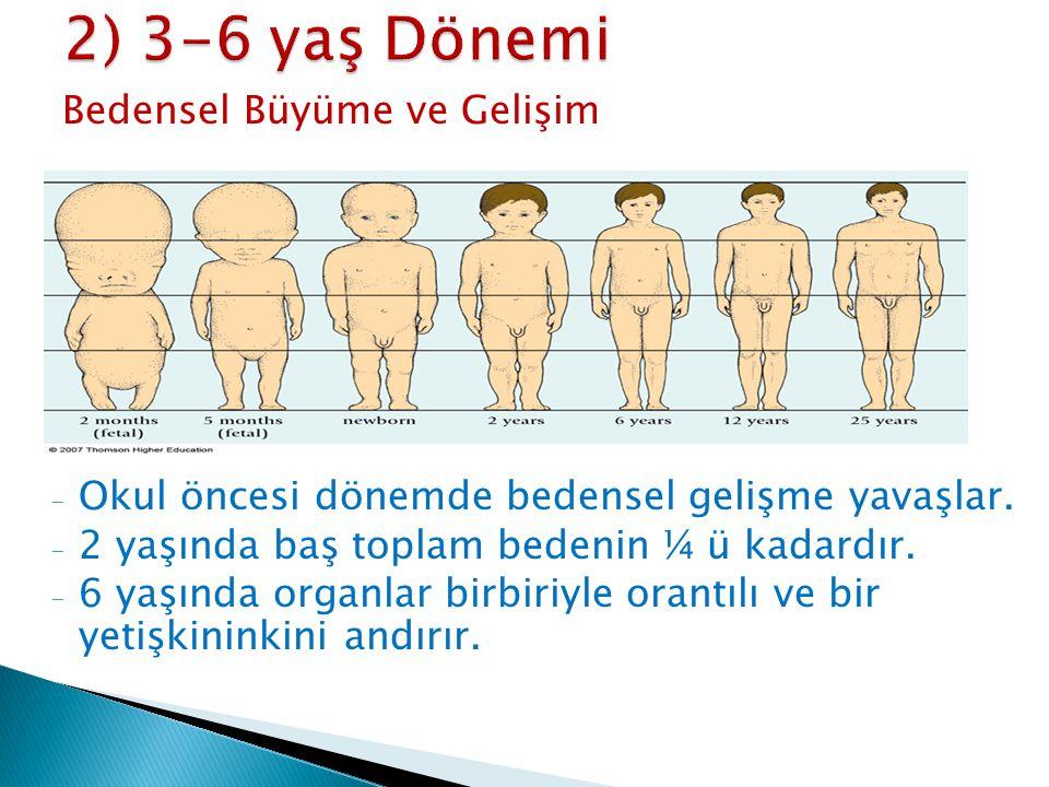 Bedensel Büyüme ve Gelişim - Okul öncesi dönemde bedensel gelişme yavaşlar. - 2 yaşında baş toplam bedenin ¼ ü kadardır. - 6 yaşında organlar birbiriy