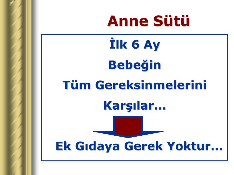 Türkiye - 1998 Bir Ayını Bitirmiş Sağlıklı Yenidoğanların %9'u Tek Başına AS %7'si Hiç AS Almıyor… %84'ü Karışık Besleniyor !!.