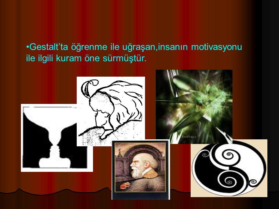 Gestalt'ta öğrenme ile uğraşan,insanın motivasyonu ile ilgili kuram öne sürmüştür.