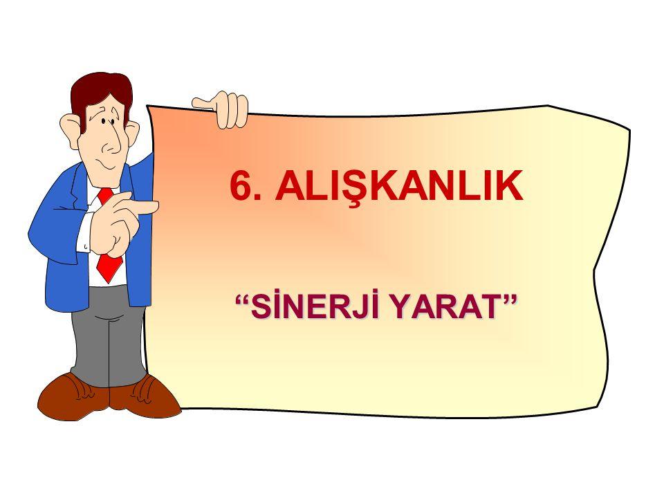 """6. ALIŞKANLIK """"SİNERJİ YARAT"""""""