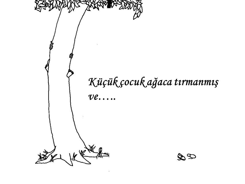 Küçük çocuk ağaca tırmanmış ve…..