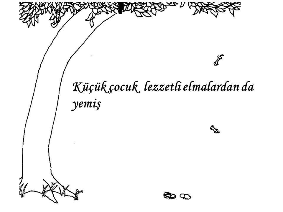 Ağaç, tekrar bana döndü diye mutluymuş çünkü o artık bir yere gidemez…….