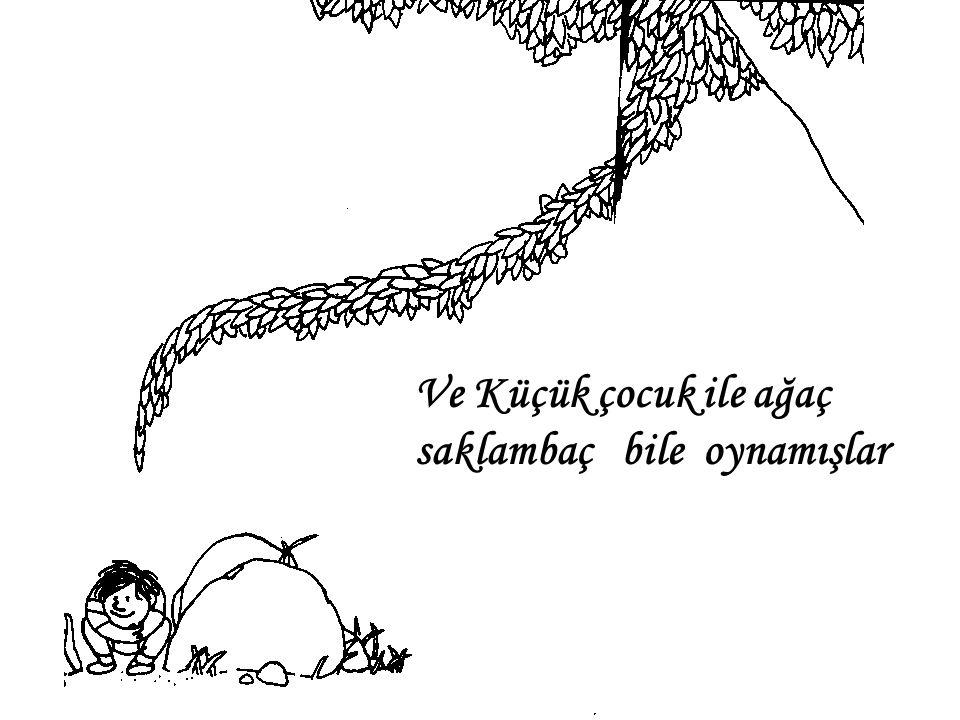 Küçük çocuk yorulunca gölgesinde uyumuş ağacın