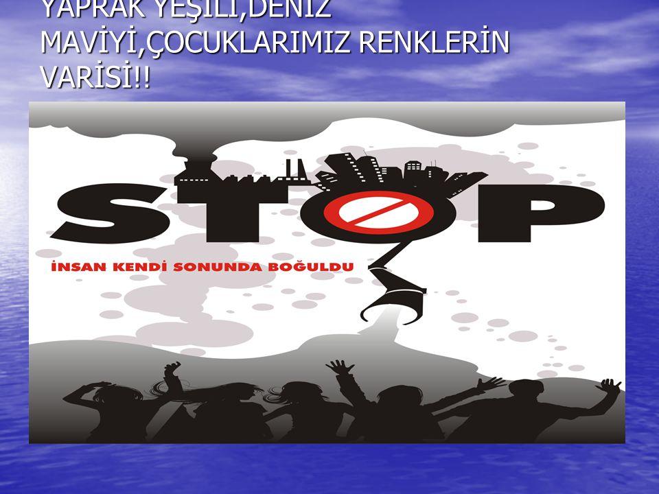 YAPRAK YEŞİLİ,DENİZ MAVİYİ,ÇOCUKLARIMIZ RENKLERİN VARİSİ!!