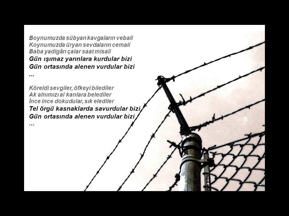 iletisim@aliyasar.com