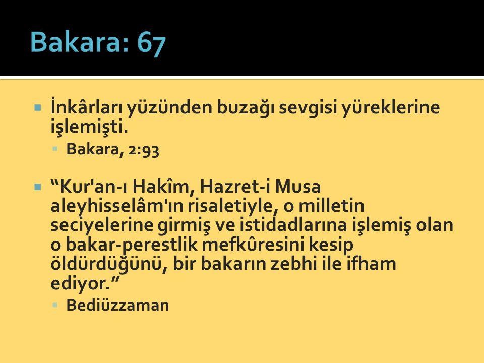 """ İnkârları yüzünden buzağı sevgisi yüreklerine işlemişti.  Bakara, 2:93  """"Kur'an-ı Hakîm, Hazret-i Musa aleyhisselâm'ın risaletiyle, o milletin sec"""