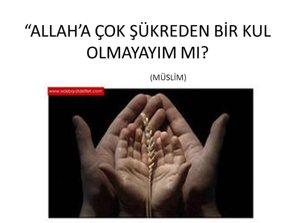 """""""ALLAH'A ÇOK ŞÜKREDEN BİR KUL OLMAYAYIM MI? ( MÜSLİM)"""