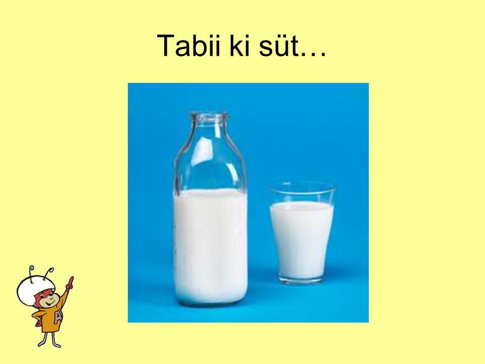 Hangisi buzdolabında saklanır? Pirinç mi? Ayakkabı mı? Süt mü?