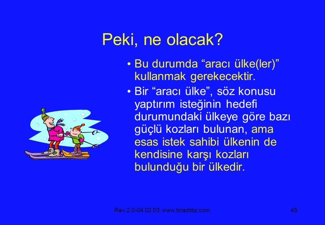 Rev.2.0-04.02.03, www.tinaztitiz.com45 Peki, ne olacak.