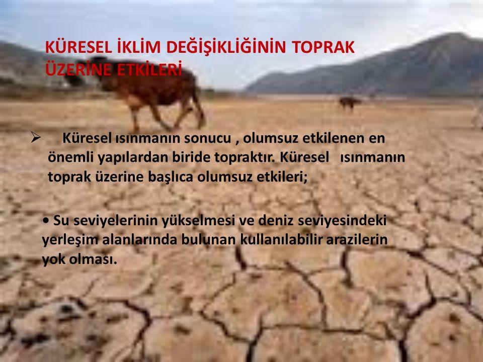 KÜRESEL İKLİM DEĞİŞİKLİĞİNİN TOPRAK ÜZERİNE ETKİLERİ  Küresel ısınmanın sonucu, olumsuz etkilenen en önemli yapılardan biride topraktır.