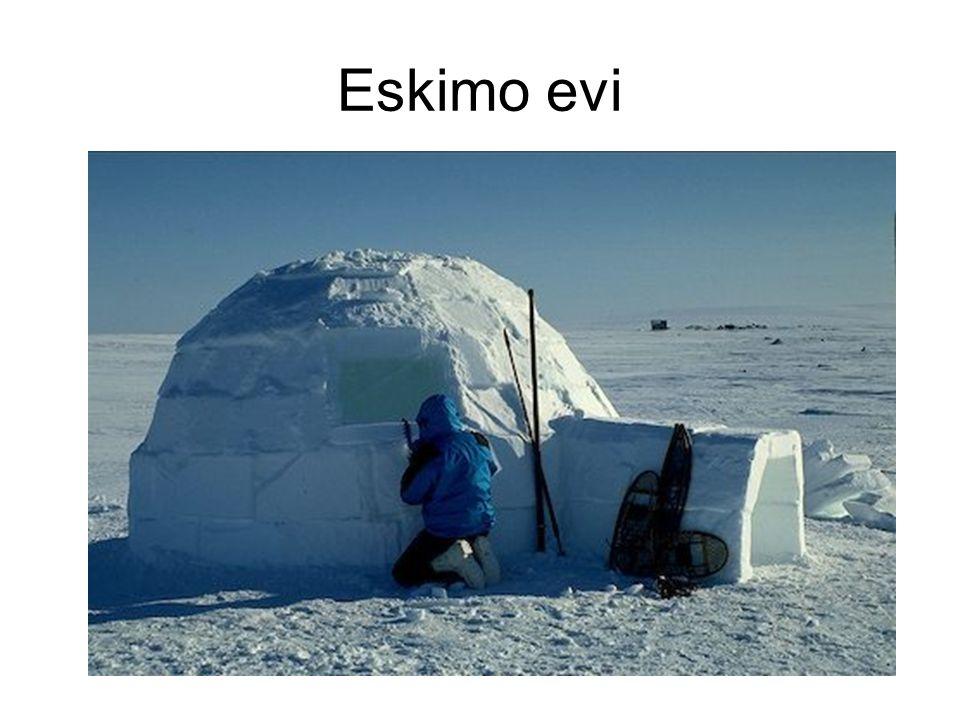 Eskimo evi