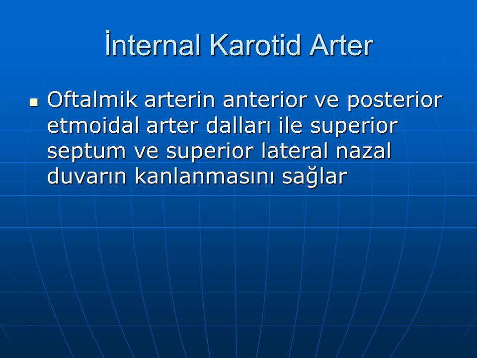 İnternal Karotid Arter Oftalmik arterin anterior ve posterior etmoidal arter dalları ile superior septum ve superior lateral nazal duvarın kanlanmasın