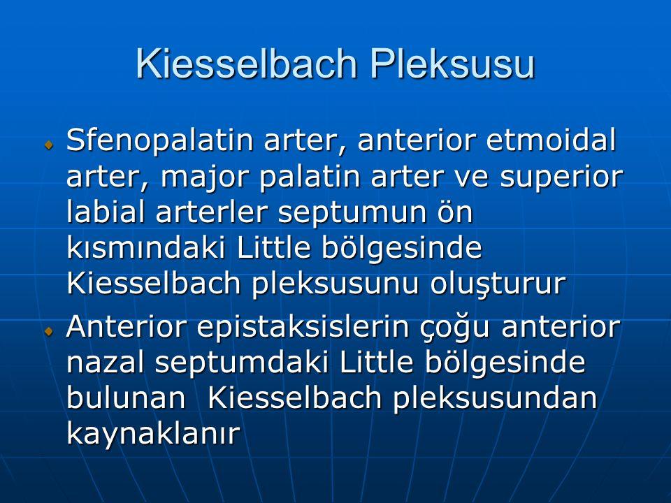 Kiesselbach Pleksusu Sfenopalatin arter, anterior etmoidal arter, major palatin arter ve superior labial arterler septumun ön kısmındaki Little bölgesinde Kiesselbach pleksusunu oluşturur Anterior epistaksislerin çoğu anterior nazal septumdaki Little bölgesinde bulunan Kiesselbach pleksusundan kaynaklanır