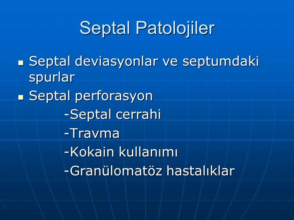 Septal Patolojiler Septal deviasyonlar ve septumdaki spurlar Septal deviasyonlar ve septumdaki spurlar Septal perforasyon Septal perforasyon -Septal c