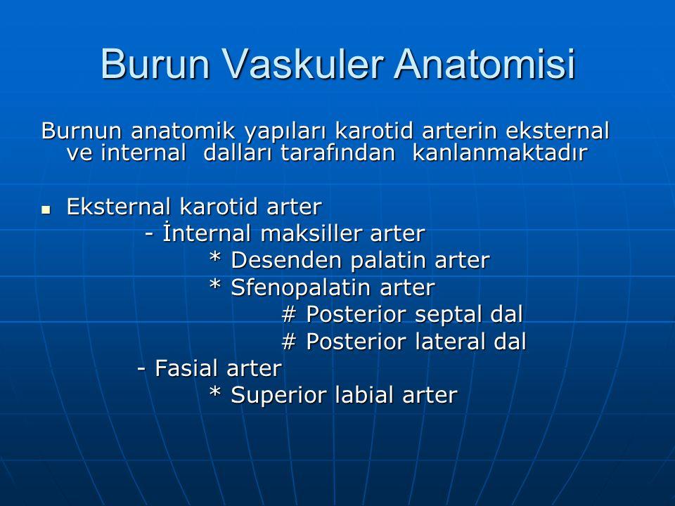Posterior Nazal Tampon Kanamanın posterior kökenli olduğu durumlarda posterior tampon konulur Kanamanın posterior kökenli olduğu durumlarda posterior tampon konulur Kullanılabilecek birkaç yöntem vardır Kullanılabilecek birkaç yöntem vardır -Foley kateter -Foley kateter -Nazal balon kateter -Nazal balon kateter -Posterior + anterior tampon -Posterior + anterior tampon Posterior tampon konulan hasta muhakkak hospitalize edilmeli ve gözleme alınmalıdır Posterior tampon konulan hasta muhakkak hospitalize edilmeli ve gözleme alınmalıdır Yerleştirildikten 48-72 saat sonra çıkartılır Yerleştirildikten 48-72 saat sonra çıkartılır