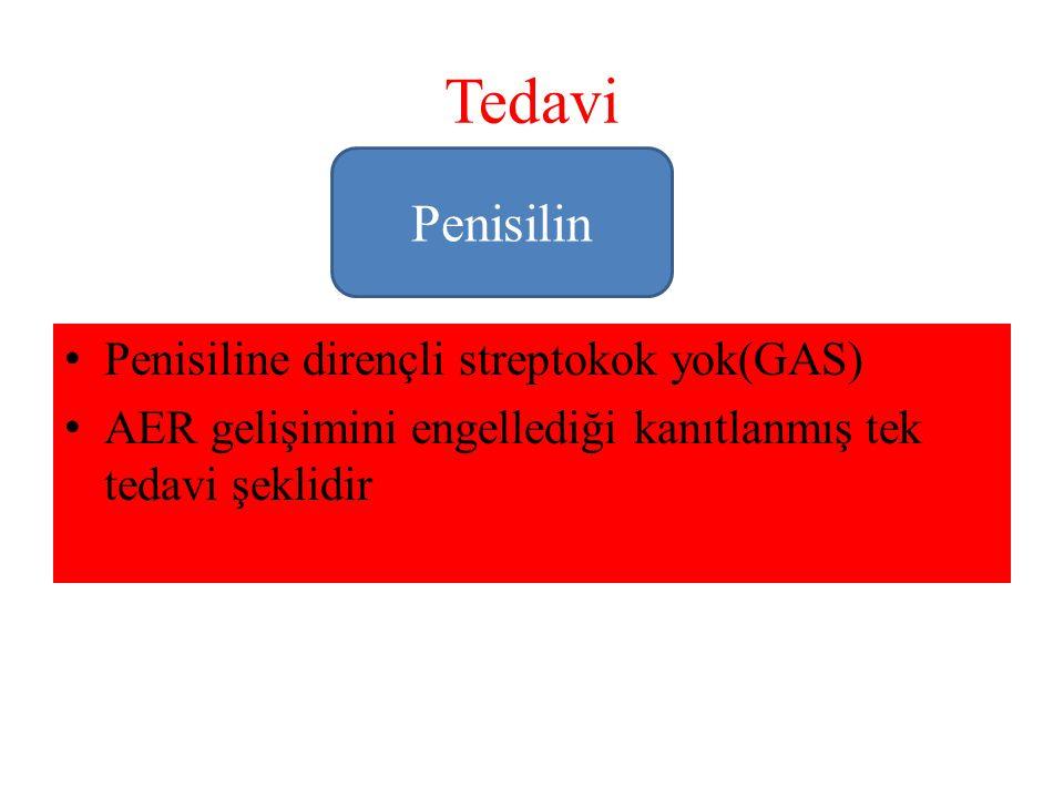 Tedavi Penisiline dirençli streptokok yok(GAS) AER gelişimini engellediği kanıtlanmış tek tedavi şeklidir Penisilin