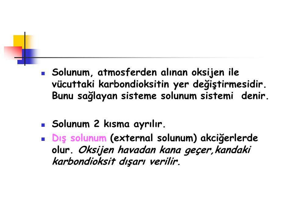 Solunum, atmosferden alınan oksijen ile vücuttaki karbondioksitin yer değiştirmesidir. Bunu sağlayan sisteme solunum sistemi denir. Solunum 2 kısma ay