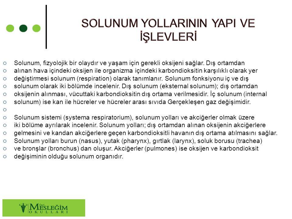 ○ Solunum, fizyolojik bir olaydır ve yaşam için gerekli oksijeni sağlar.