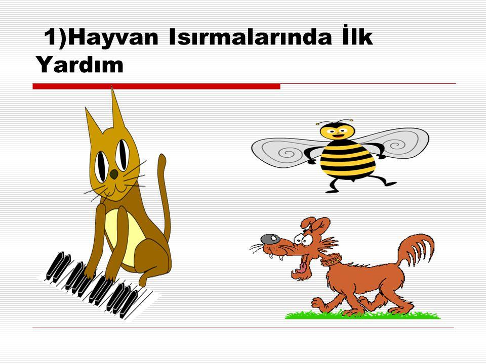 1)Hayvan Isırmalarında İlk Yardım