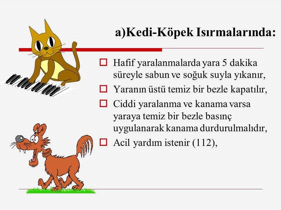 a)Kedi-Köpek Isırmalarında:  Hafif yaralanmalarda yara 5 dakika süreyle sabun ve soğuk suyla yıkanır,  Yaranın üstü temiz bir bezle kapatılır,  Cid