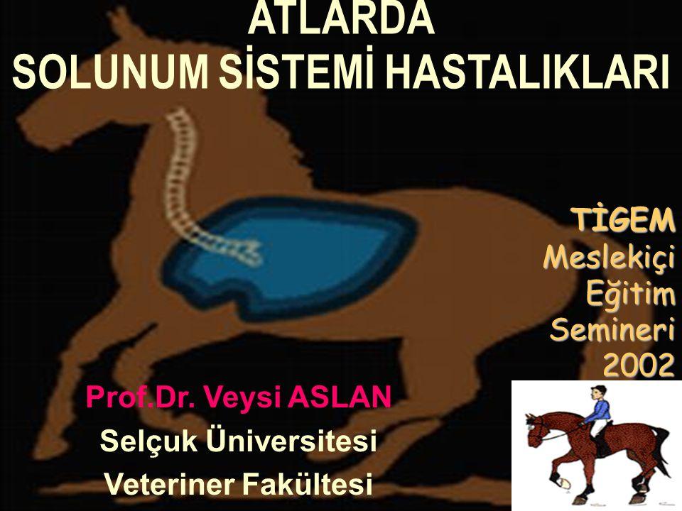 ATLARDA SOLUNUM SİSTEMİ HASTALIKLARI Prof.Dr. Veysi ASLAN Selçuk Üniversitesi Veteriner Fakültesi TİGEMMeslekiçiEğitimSemineri2002