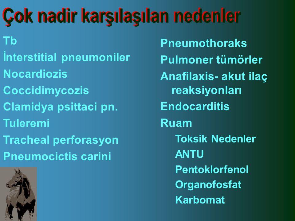 Çok nadir karşılaşılan nedenler Tb İnterstitial pneumoniler Nocardiozis Coccidimycozis Clamidya psittaci pn. Tuleremi Tracheal perforasyon Pneumocicti