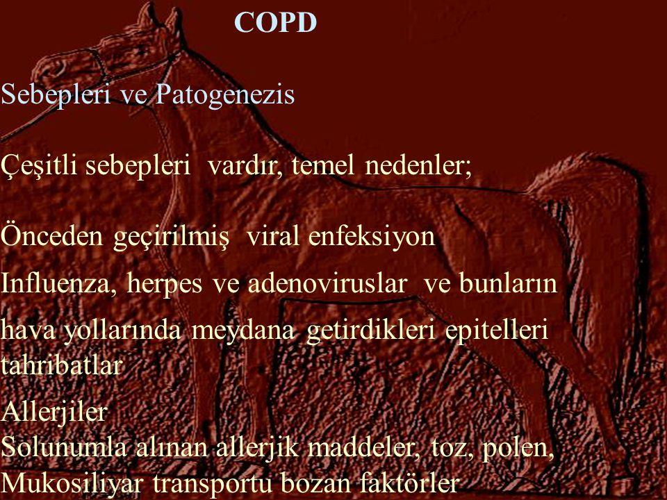 COPD Sebepleri ve Patogenezis Çeşitli sebepleri vardır, temel nedenler; Önceden geçirilmiş viral enfeksiyon Influenza, herpes ve adenoviruslar ve bunl