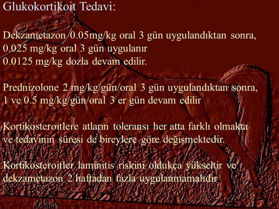 Glukokortikoit Tedavi: Dekzametazon 0.05mg/kg oral 3 gün uygulandıktan sonra, 0.025 mg/kg oral 3 gün uygulanır 0.0125 mg/kg dozla devam edilir. Predni