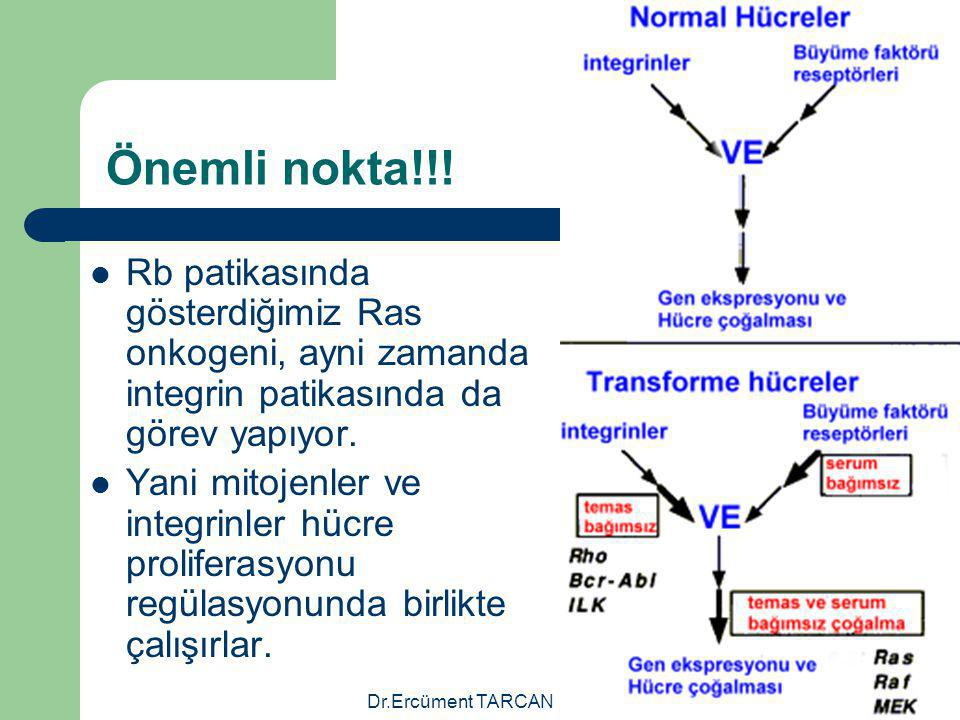 Dr.Ercüment TARCAN Önemli nokta!!! Rb patikasında gösterdiğimiz Ras onkogeni, ayni zamanda integrin patikasında da görev yapıyor. Yani mitojenler ve i