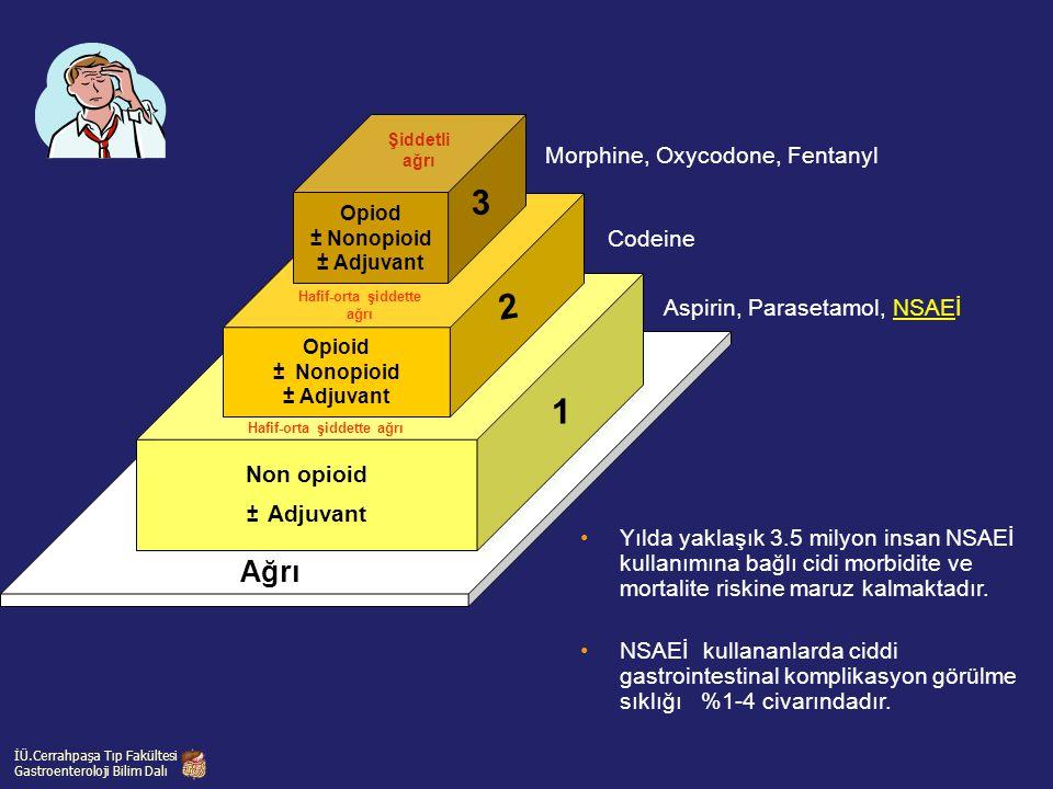 Non opioid ± Adjuvant Opioid ± Nonopioid ± Adjuvant Opiod ± Nonopioid ± Adjuvant Ağrı 3 2 1 Aspirin, Parasetamol, NSAEİ Codeine Morphine, Oxycodone, F