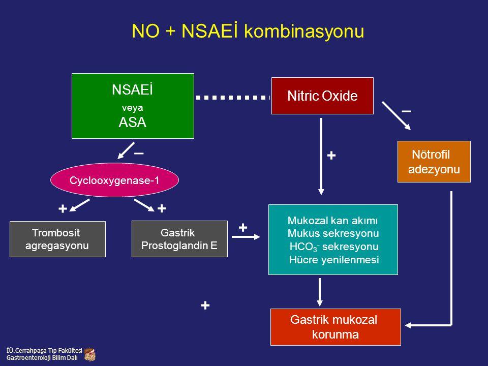 NO + NSAEİ kombinasyonu NSAEİ veya ASA Nitric Oxide Nötrofil adezyonu Mukozal kan akımı Mukus sekresyonu HCO 3 - sekresyonu Hücre yenilenmesi Gastrik