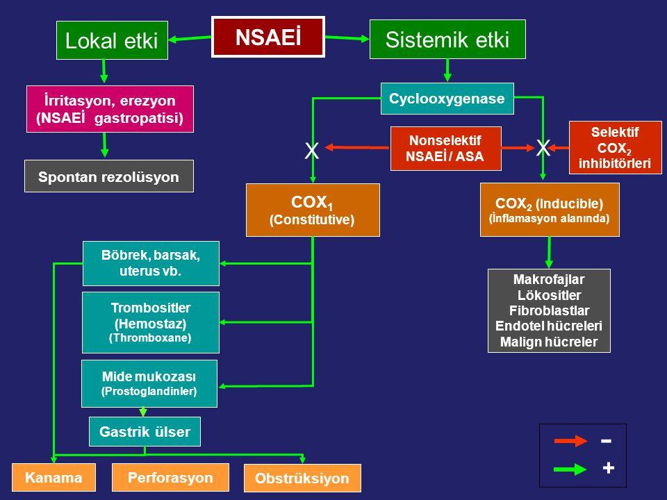 Gastrik ülser NSAEİ Obstrüksiyon Böbrek, barsak, uterus vb. Makrofajlar Lökositler Fibroblastlar Endotel hücreleri Malign hücreler COX 2 (Inducible) (