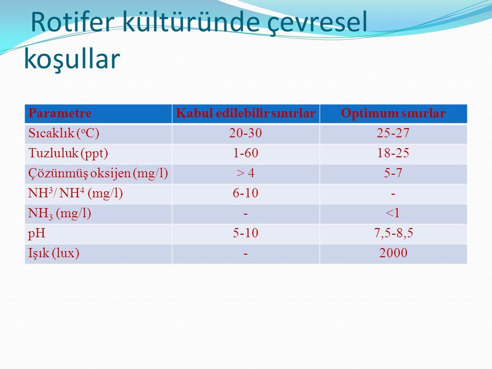 Rotifer kültüründe çevresel koşullar ParametreKabul edilebilir sınırlarOptimum sınırlar Sıcaklık ( o C)20-3025-27 Tuzluluk (ppt)1-6018-25 Çözünmüş oks