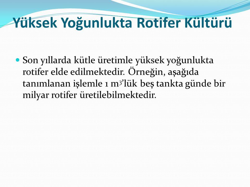 Yüksek Yoğunlukta Rotifer Kültürü Son yıllarda kütle üretimle yüksek yoğunlukta rotifer elde edilmektedir. Örneğin, aşağıda tanımlanan işlemle 1 m 3 '