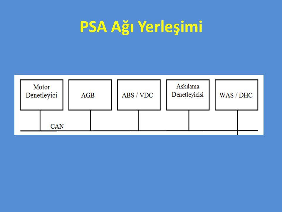 PSA Ağı Yerleşimi