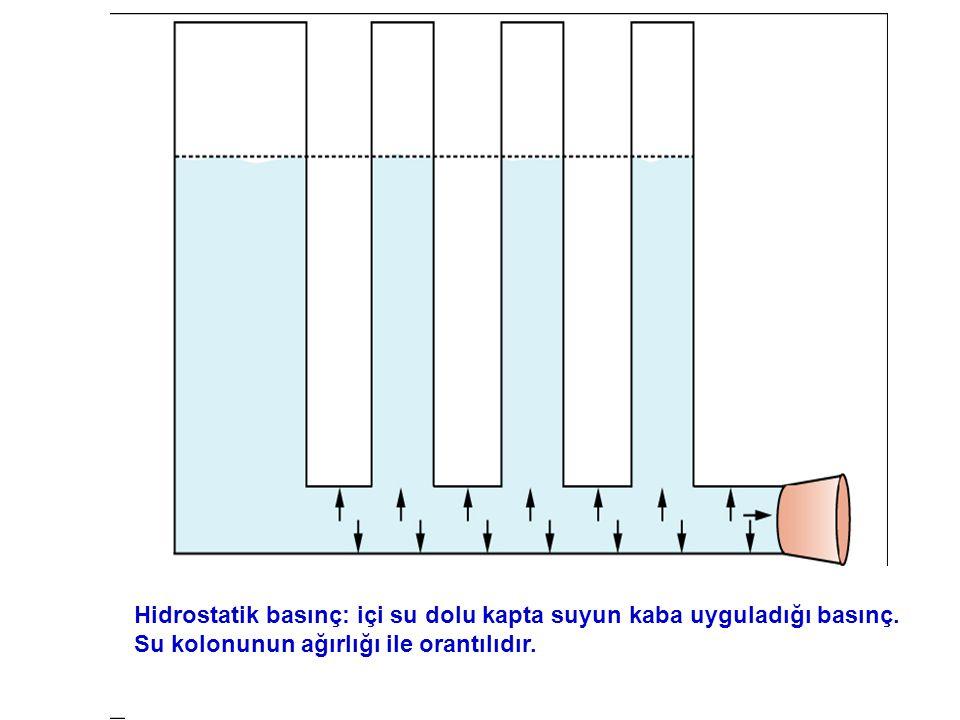 Hidrostatik basınç: içi su dolu kapta suyun kaba uyguladığı basınç. Su kolonunun ağırlığı ile orantılıdır.