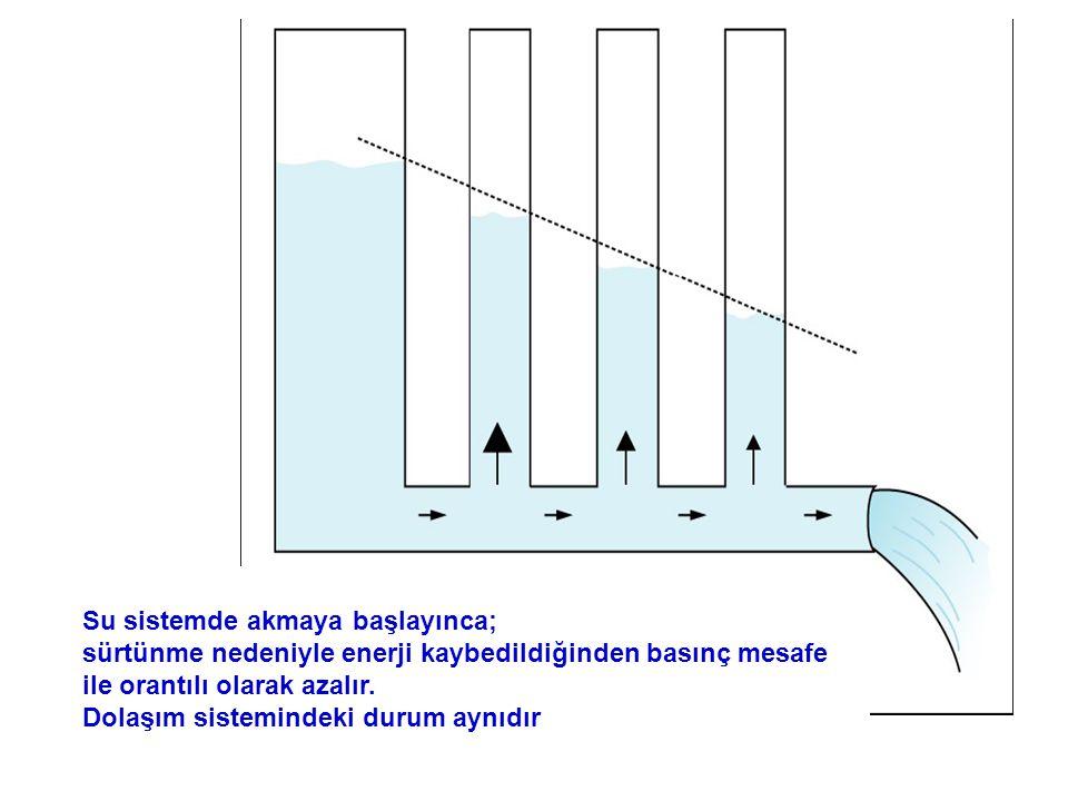 Su sistemde akmaya başlayınca; sürtünme nedeniyle enerji kaybedildiğinden basınç mesafe ile orantılı olarak azalır. Dolaşım sistemindeki durum aynıdır
